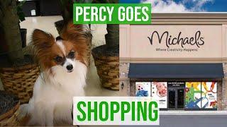 I Take My Dog Shopping! // Percy the Papillon Dog