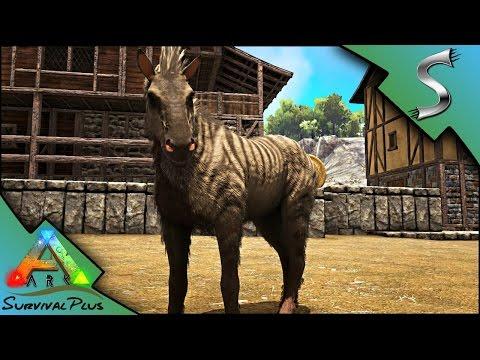 EQUUS BREEDING + IMPRINTING! TAMING FAILS AND STEALING WILD EGGS - Ark: Survival Plus [Gameplay E19]