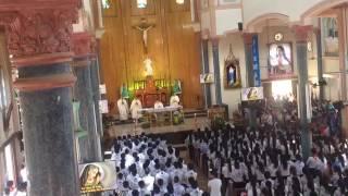 Thánh lễ cao điểm đại hội Giới Trẻ Con Đức Mẹ cụm Vinh 1 và sinh nhật 10 năm cdm Vạn Lộc