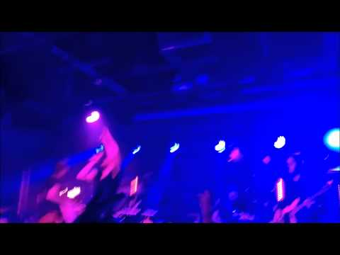 Nexus 5 Smartphone Gig / Music Concert Video Test - V poor distorted sound! Is this normal?