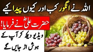 Hazrat Ali (R.A) ka Farman | ALLAH Nay Angoor Kab or kiyo Paida Kiye | Grapes | Islam Advisor