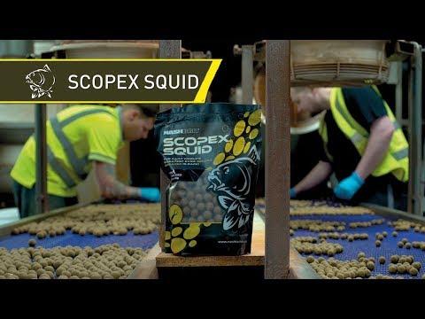 NashBait - Scopex Squid