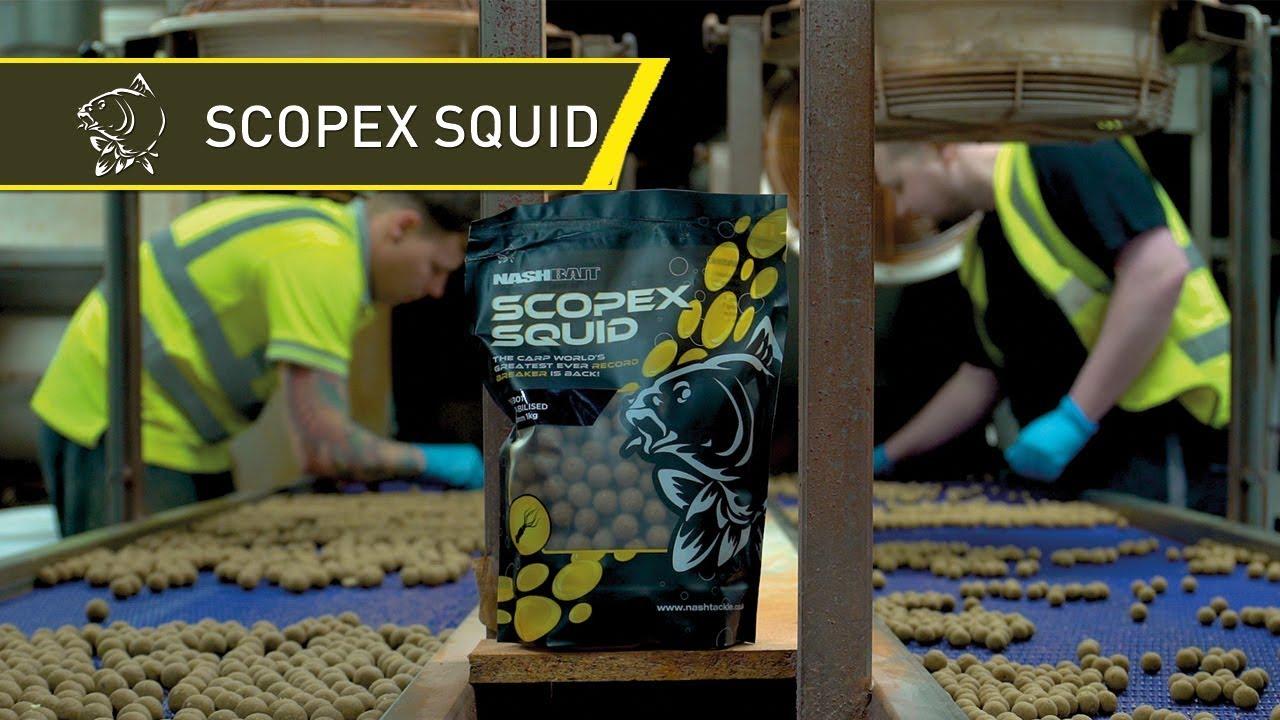 Nash Scopex Squid Cultured Hookbaits 24mm B6860 Hakenk/öder Hookbait Karpfenk/öder Hook Bait