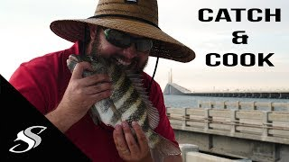 Convict Fishing - Skyway Fishing Pier Catch & Cook!