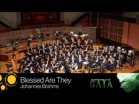 SUWO - Blessed Are They