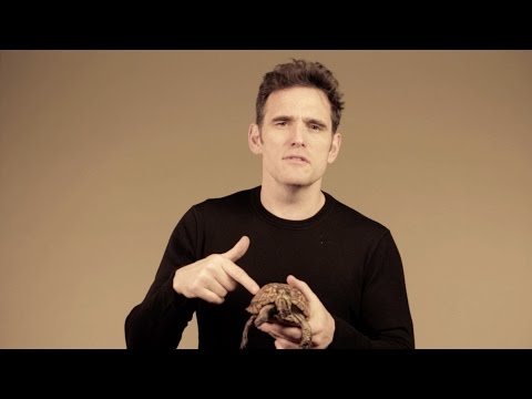 Matt Dillon Supports Turtle and Tortoise Conservation