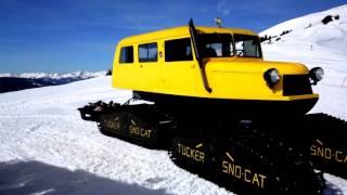snowcatxx87