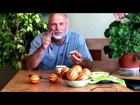 Вьетнамская дыня - нужны семена - YouTube