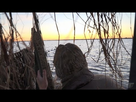 Gun Things To Do Before You Die: Hunt Diver Ducks From A Pontoon Boat | Gun Talk