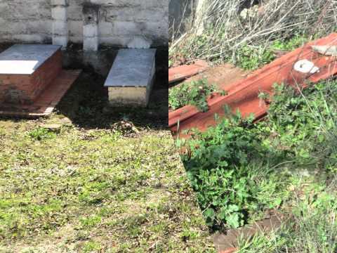 fotos del cementerio abandonado