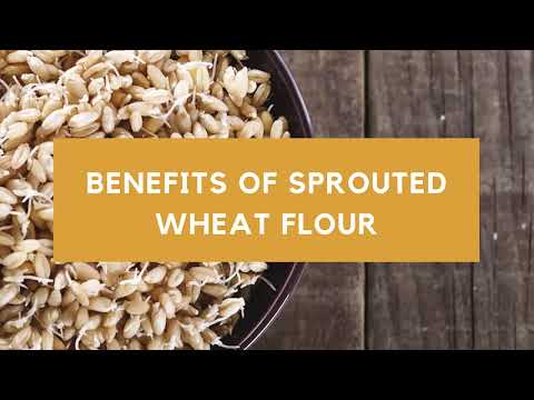 why-choose-sprouted-wheat-flour