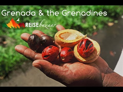 Grenada & the Grenadines - The Spice of the Caribbean