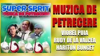 Descarca Rudy de la Valcea & Hary & Viorel Puia - Ma duc sa ma dreg cu vin