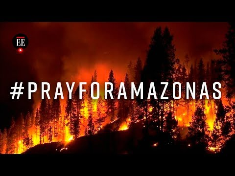 Lucyl Bee - Se incendia el pulmon del planeta #PRAYFORAMAZONAS