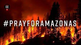 Amazonia en llamas: un ecocidio sin fin - Noticias - El Espectador