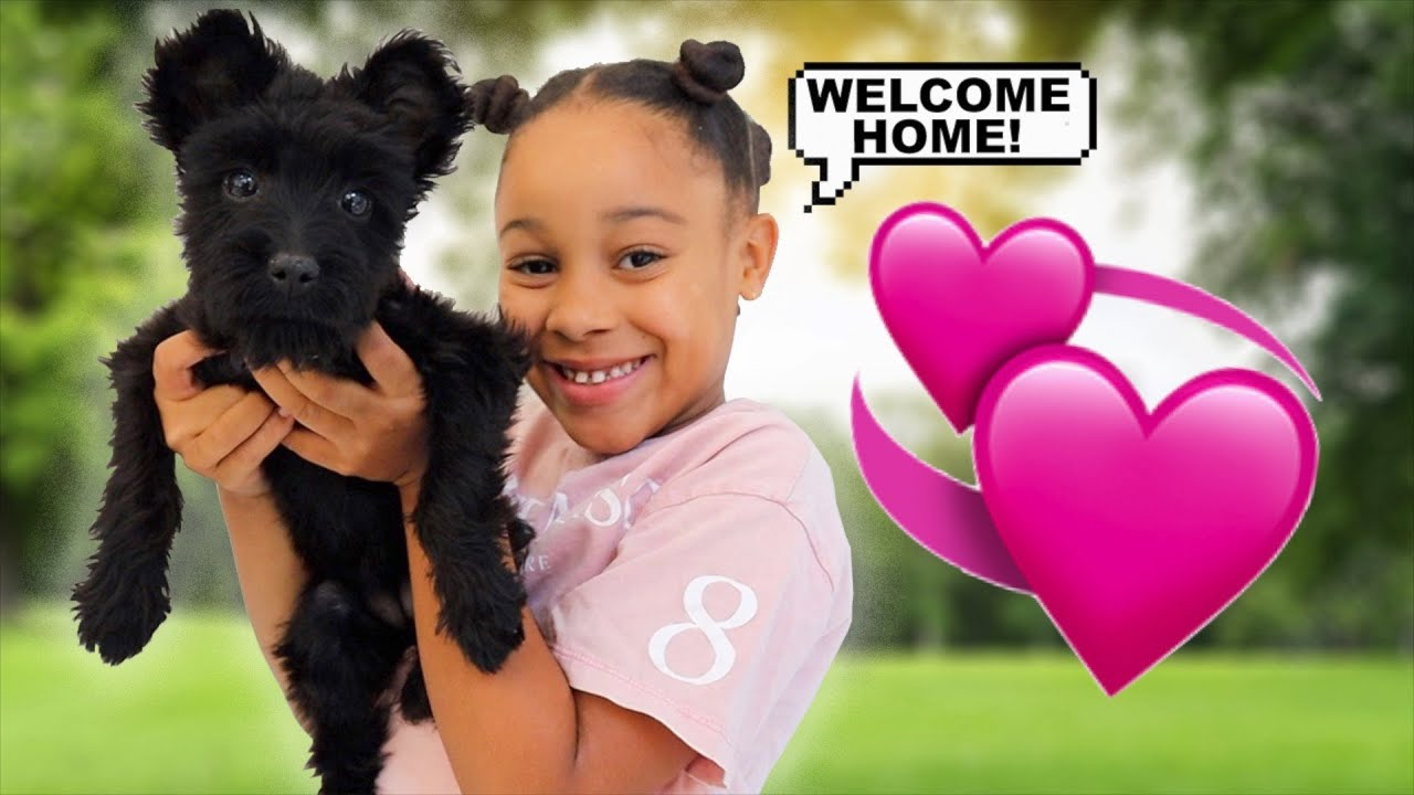 Cali's Puppy Finally Came Home!!!
