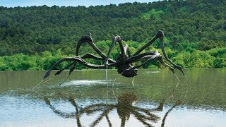 5-of-the-biggest-spiders-to-have-ever-roamed-the-planet