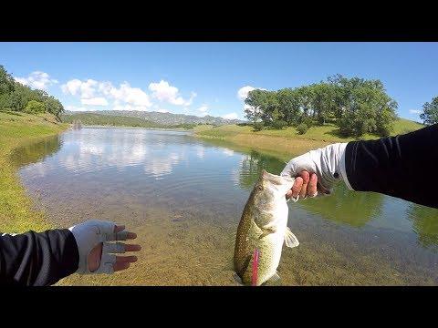 Lake Berryessa Spawning Bass Shore Fishing
