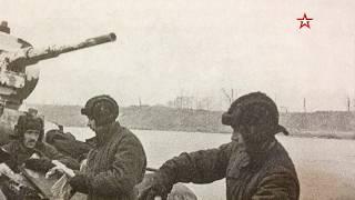 Прощальный снимок героя с Невы: поисковики нашли останки бойца с известной фотографии