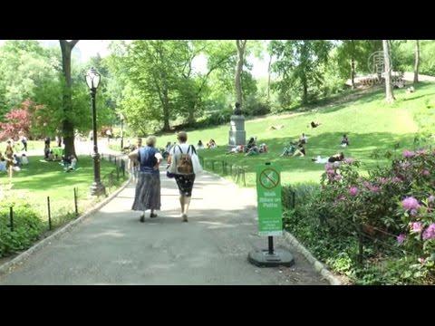 纽约中央公园高温92度  创最热新纪录(纽约高温_防晒)