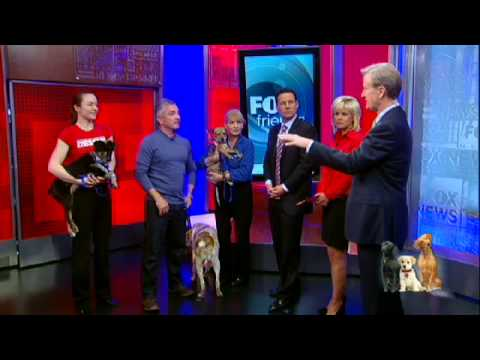 Cesar Millan Reveals What Your Dog is Trying to Tell You!