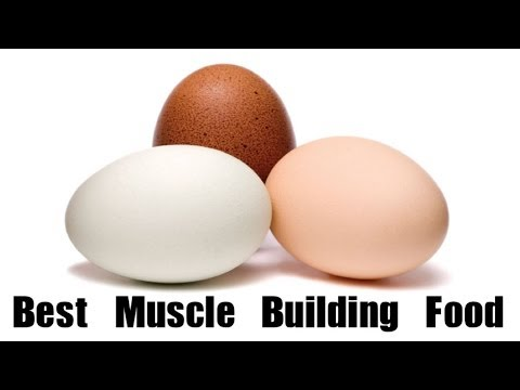 Bulk Up with Mother Nature's Best Protein Food