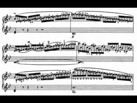 Wieniawski, Henryk op.18 for 2 violins part 5,6,7,8