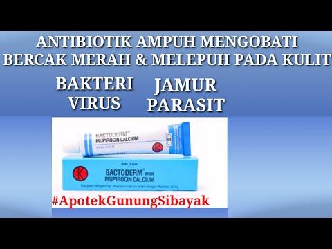 MUPIROCIN OBAT AMPUH MENGOBATI INFEKSI KULIT AKIBAT BAKTERI DAN VIRUS & KULIT MELEPUH BERISI NANAH