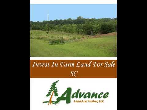 Invest In Farm Land For Sale SC