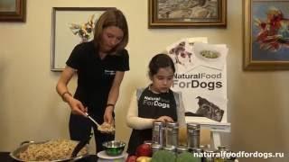 Мастер-класс по приготовлению натуральной еды для собак