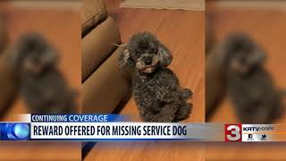 Reward offered for service dog that was stolen in Great Falls