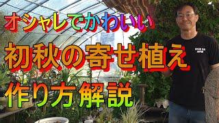 [ガーデニング]寄せ植えの作り方「年間100個の寄せ植えを作るプロガーデナーが教える初秋の寄せ植え」