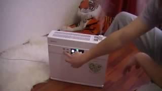 видео Какой ионизатор воздуха купить