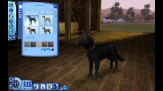The Sims 3: How to Create a Dog