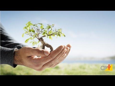 Clique e veja o vídeo Curso Educação Ambiental - Infográfico