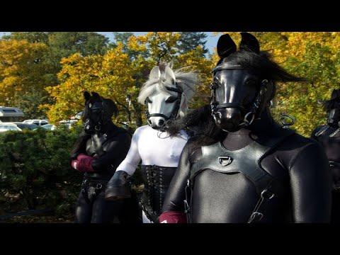 Ponygirl Shyanne - Lord Of The Pranceиз YouTube · Длительность: 3 мин24 с