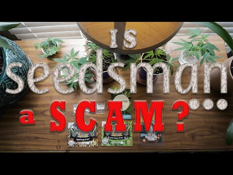 Is Seedsman A SCAM?! (Seed Bank Review)