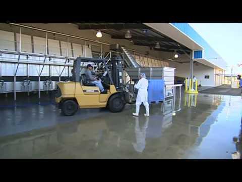 Belize Aquaculture Ltd –  Sea Farms, Inc.