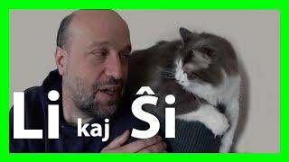 [Esperanto] Mi amas miajn katojn #neperfekte