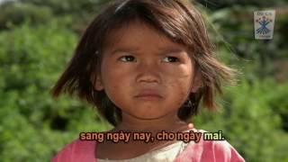 Karaoke - Hy Vọng Đã Vươn Lên  (Nguyễn Đức Quang)