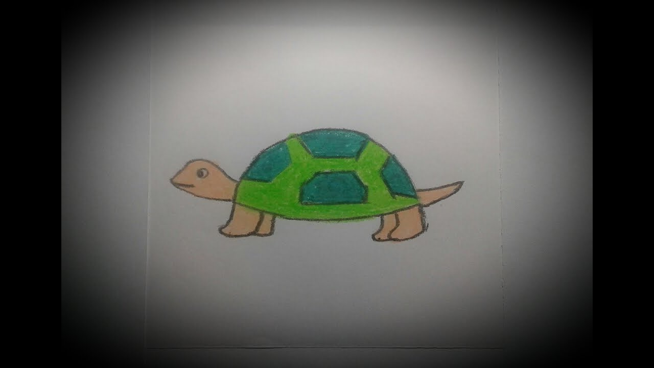 How To Draw Simple Tortoise For Kids Art And Craft Point Youtube