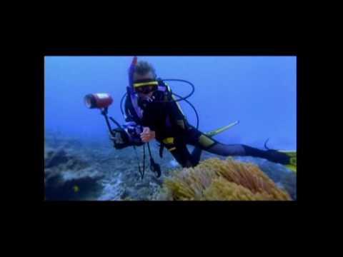 SEVEN SEAS II - Seychelles
