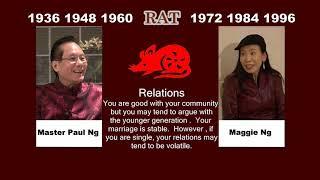 2020, Feng Shui Master, Paulng, Chinese Zodiac Animals, Rat