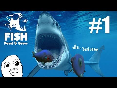 เกมปลาน้อยกับทะเลอันโหดร้าย Feed and Grow #1 [DMJ]