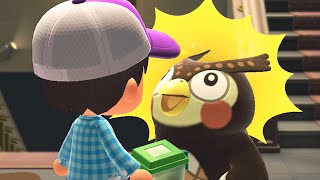 How To Get Bagworm And Blathers Reaction to Bagworm- Animal Crossing: New Horizons