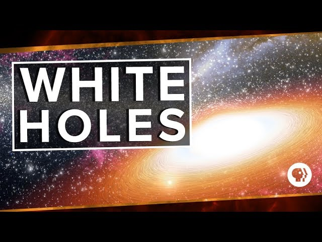 We live in a multiverse checkered with black holes, each containing