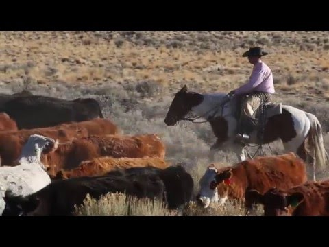 Harney County: Telling Our Story (trailer)
