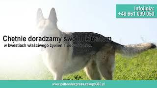 Sklep internetowy karma dla kotów karma dla psów Białystok Pet Food Express Agnieszka Murawska