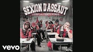 Sexion d'Assaut - Ils appellent ça (audio)
