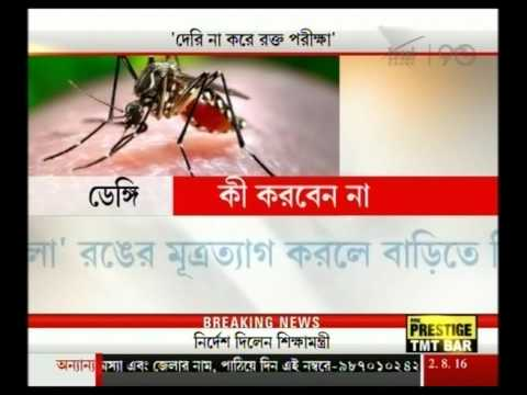 Doctors suggest immediate blood test for slightest fever to detect Dengue
